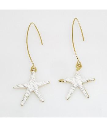 Σκουλαρίκια Αστερίας Fantazy 01495-13