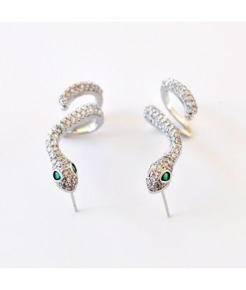 Σκουλαρίκια Με Σχέδιο Φίδι 01494-99 Ασημί