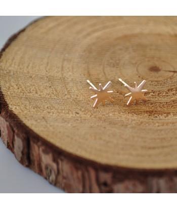 Σκουλαρίκια Ατσάλι Με Σχέδιο 01822-4 Rose Gold